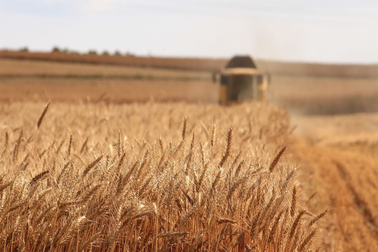 formazione per aziende agricole